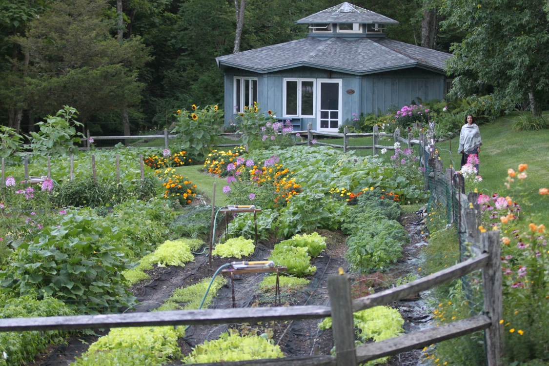 Pumpkin Hollow Garden