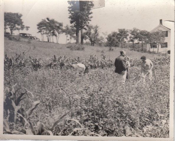 """<a href=""""/content/early-years-gardening"""">Early years of gardening</a>"""