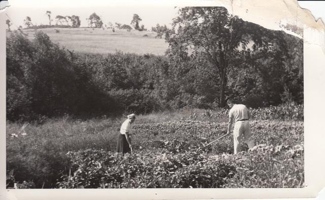 """<a href=""""/content/garden-open-farm-fields"""">Garden &amp; open farm fields</a>"""